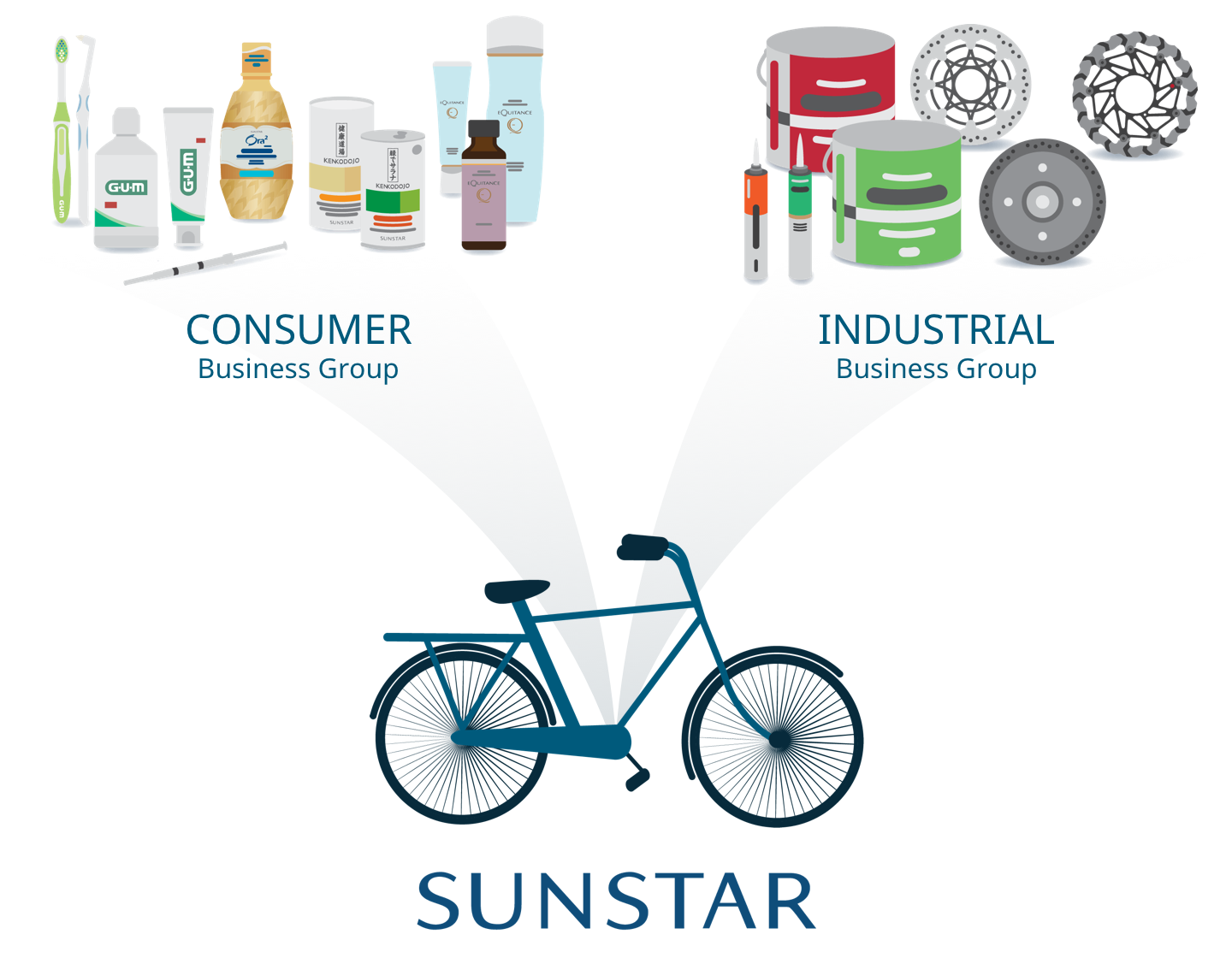 Sunstar's company structure is comprised of Consumer and Industrial businesses