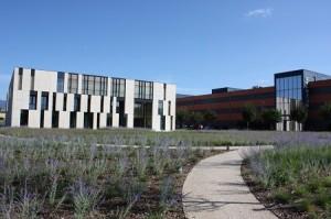 Sunstar Campus